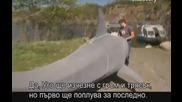 Ловци на митове - Взривяване на акула - S06e12 - с Бг превод