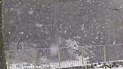 """""""Моята новина"""": В Деня на снега - хубав сняг валя!"""