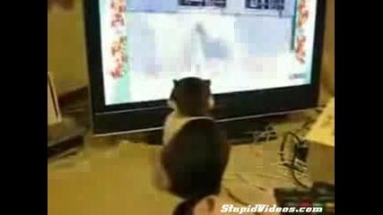 Злобна Котка Хипнотизира Хора