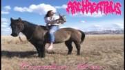 Archagathus - Canadian Horse Full Album - Youtube