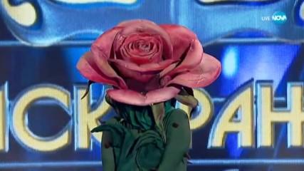 Най-голямата изненада на сезона! Розата e разкрита | Маскираният певец