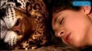 vasilis_saleas_-_love_dreams___f