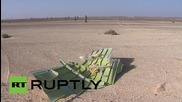 Egypt: EMERCOM workers search Sinai crash site for victims' belongings