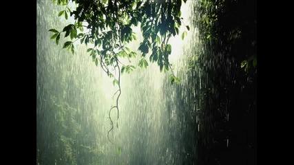 За всички почитатели на дъжда! (original) 'rainy Mood' - Daniel Wisenhoff