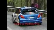 Rally 1000 Miglia 2009