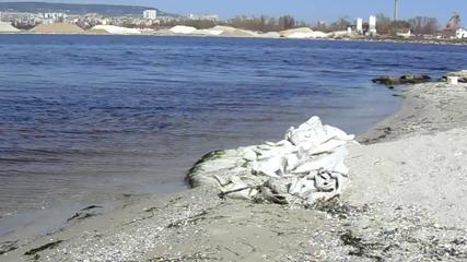 Варненското езеро. Да се замислим...