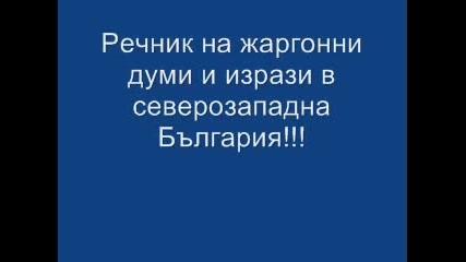 Речник На Думи В Северозападна България!!!