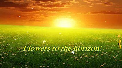 Цветя до хоризонта ... ...
