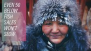 Surviving the cold of Yakutsk's fish market