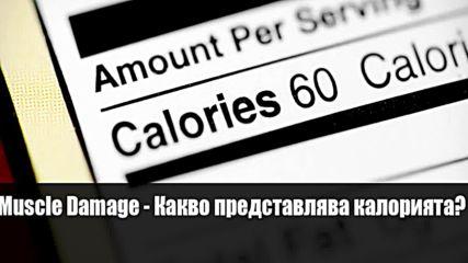 Muscle Damage-Какво представлява калорията?