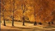 Есен в гората - Детска песен