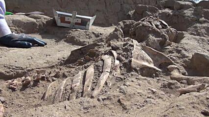 Peru: Archaeological excavations resume at Huaca Santa Rosa de Pucala following COVID set back
