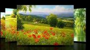 Носталгия по лятото...(gerhard Nesvadba-painting)...