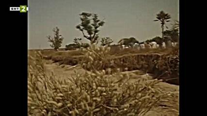 Октопод (1992) - сезон 6, епизод 2 (бг аудио)