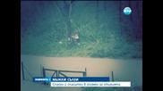 Спасен и спасител проливат сълзи в спомен за стихията във Варна - Новините на Нова