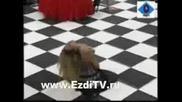 Ориенталски танц