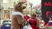 Смях ! Бокс с кенгуру ! Скрита камера !