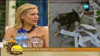 """Специалният гост в """"На кафе"""" ще бъде певицата Джина от """"Трамвай № 5"""""""