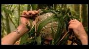 Как да си направите поличка в джунглата