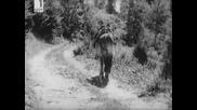 Краят На Песента 1971 - Руфинка Болна Легнала - H Q ( Субтитри )