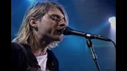 Nirvana - Pennyroyal Tea (live And Loud)