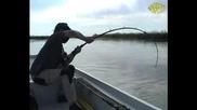 Fishing Dreams I