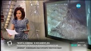 """""""Моята новина"""": Село Светлен се бори с водната стихия"""