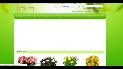 Доставка на саксийни растения и цветя - http.saksii.com