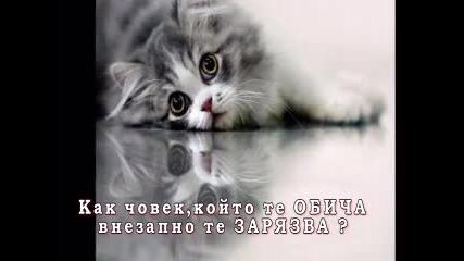[2012] Как човек,който те Обича,внезапно те Зарязва? - Mir40 - Love is Gone