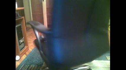 Папагала Рио се върти на стола