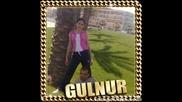 gulitoo