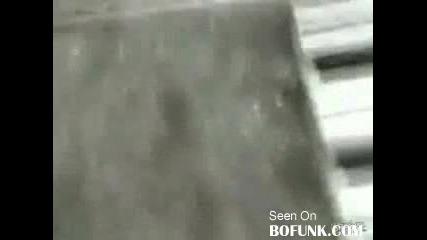 **смях** Мъж Пикае На Електрическа Ограда :d