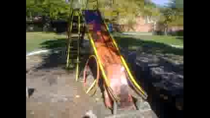 Видео0138