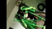 T3rrorcat & Ela erschrecken Menschen x)