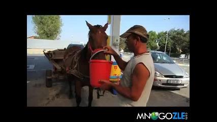 Румънска каруца навигация и парктроник