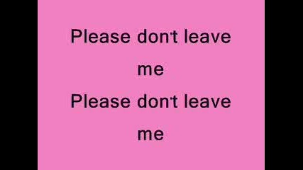 Pink - Please don`t leave me lyrics