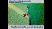 Naruto Shippuuden - Intro