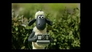 Shaun The Sheep - Scrumping