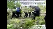 Russian Cop Slammed By A Tree