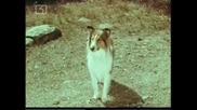 Ласи - Бг Аудио, Епизод (1965) - Lassie залавя бракониери