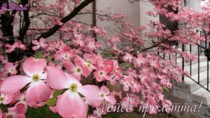 Честита Пролет !