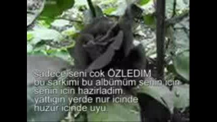 Г‡aдџlar Yeni Albгјm 2009 Babam