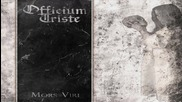 Officium Triste - Your Fall From Grace