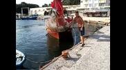 Акостиране на корабче в Китен - 28 август