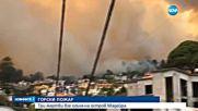 Пожари взеха човешки жертви на остров Мадейра