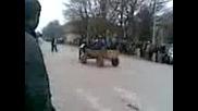Гонки със магареш каручки в Генерал Тошево 01.04.09