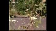 Elveda Derken - Сълзи над Босфора - Епизод 12 Част 6