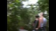 Оранжерията На Mainau
