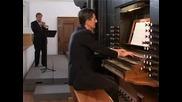 Giuseppe Tartini Concert in D - Allegro - Andante