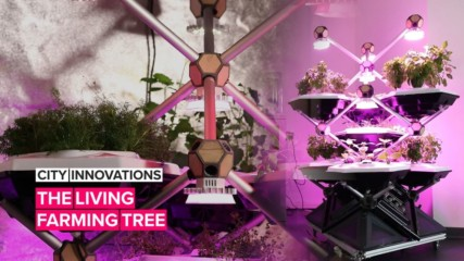 City Innovations: When indoor farming and sleek design come together